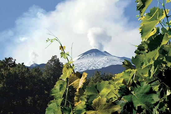 Etna and Wines Tour