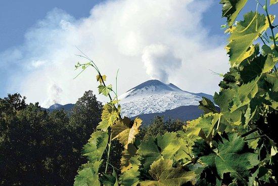 埃特納火山之旅