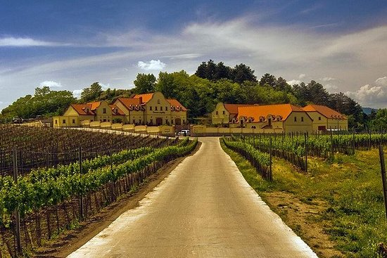 2day private tour of wine region in Czech Republic from Vienna