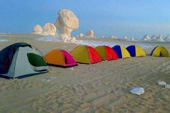 从开罗在白色和黑色沙漠露营的过夜旅行