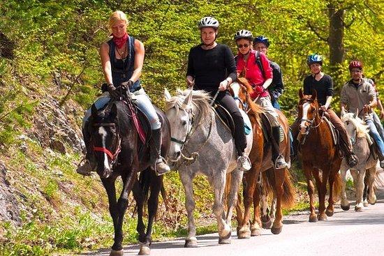 Tour panoramique à cheval de San Juan