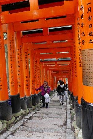 Fushimi Inari-taisha pathway of torii gates.