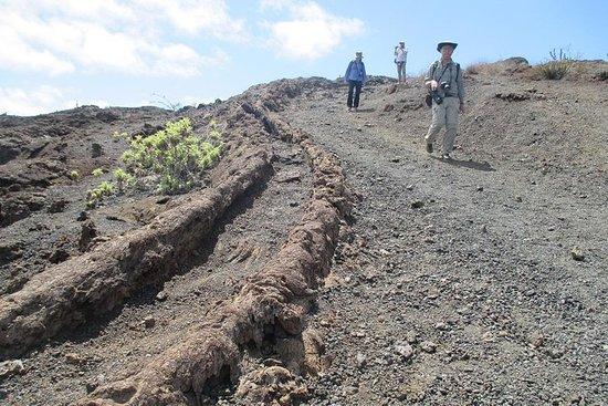 サンクリストバル島への5日間ガラパゴス旅行陸上