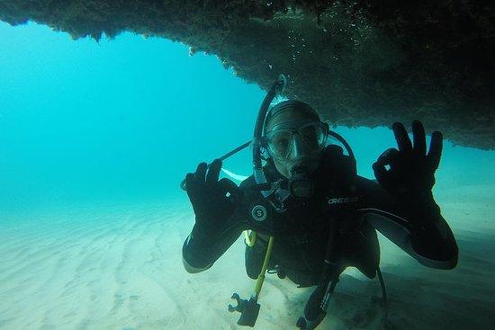 Plongée sous-marine pour débutants