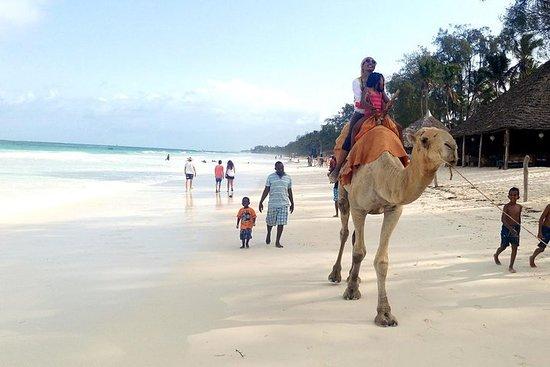 7 dias de férias em Diani