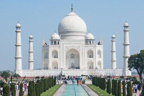 LetsGoIndiaTours Taj Mahal Day Tours