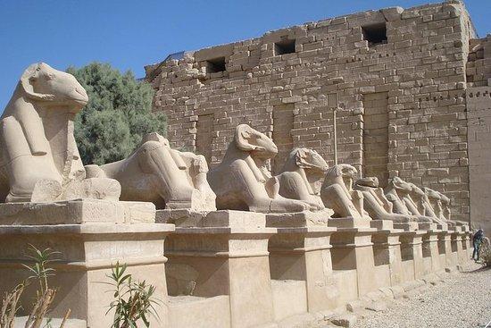 Tour privato di 7 notti dal Cairo a