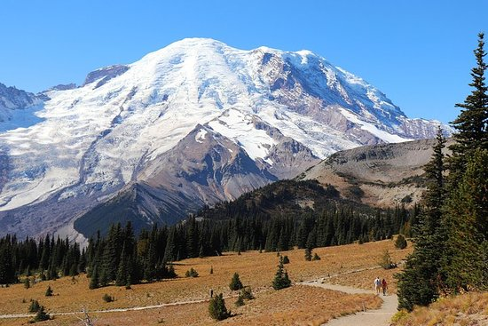4-Day Pacific Northwest National Parks Tour from Seattle