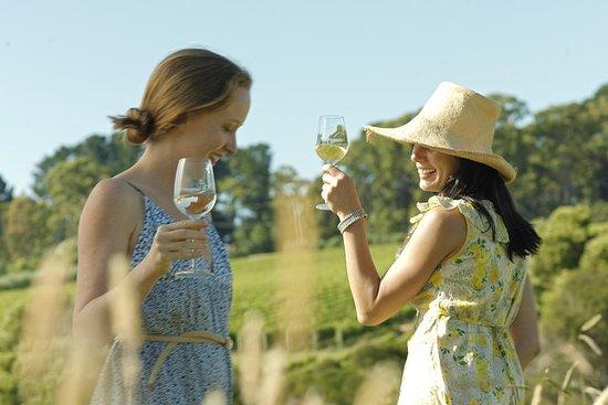 Yarra Valley Wine Tour met lokale ...