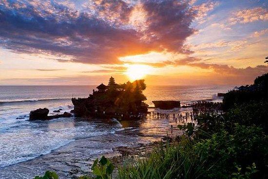 巴厘岛私人游:瀑布,猴子森林和海神日落游