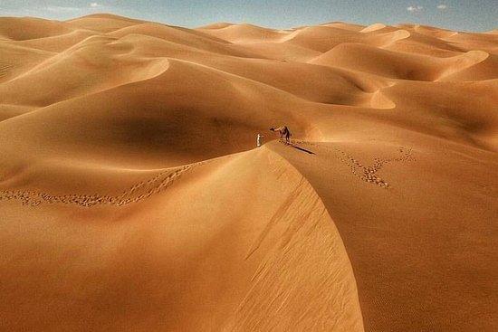 Woestijnsafari in de avond door de ...