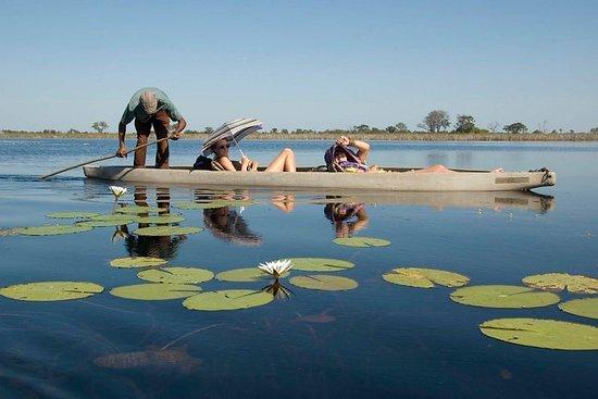 8-Day Chobe and Okavango Delta Tour from Victoria Falls