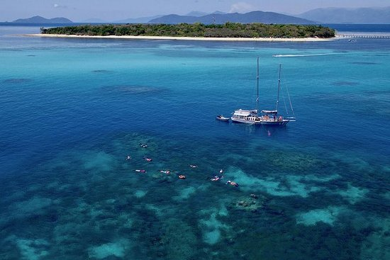 Ảnh về 2-Day Great Barrier Reef Combo: Green Island Sailing and Outer Reef Snorkel Cruise