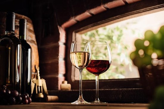 Old-World Wine Tour Odyssey