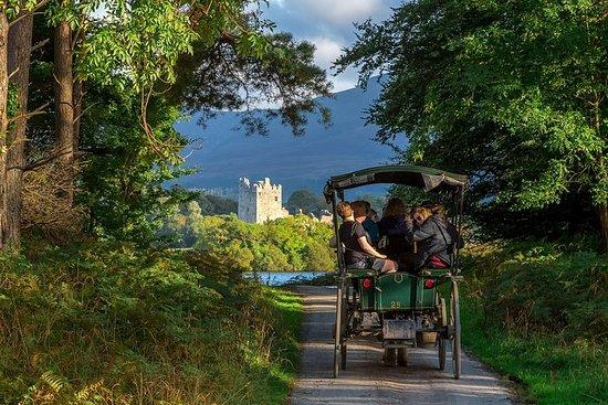 3-tägige Tour durch Irlands Süden ab...