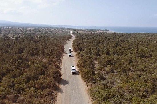 パポスからAkamas半島へのSafariツアー