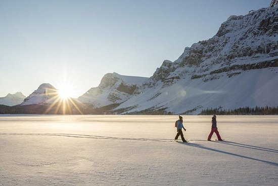 Eco amigável snowshoeing na paisagem...