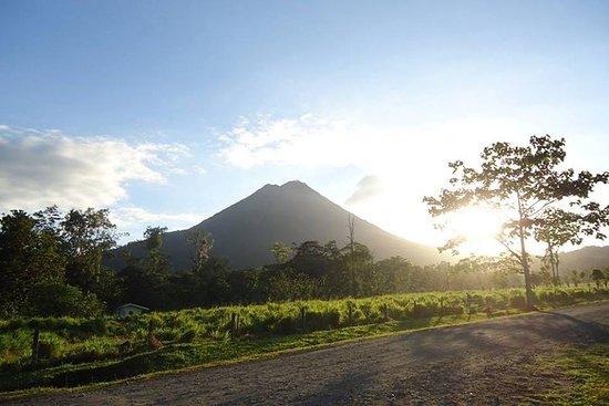 Volcan Arenal et sources chaudes Baldi