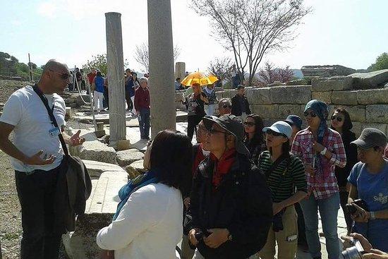Tour privato su misura di Efeso dal