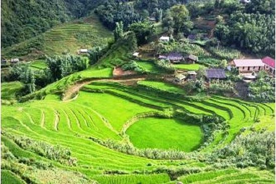 Full-Day Biking Adventure in Sapa