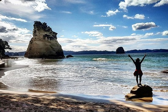 Coromandel Day Trip (Cathedral Cove and...