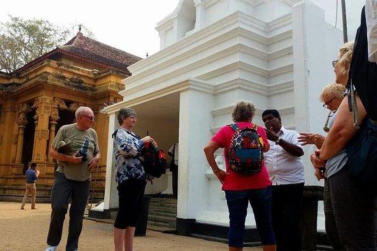 Colombo City Tour Fra Negombo
