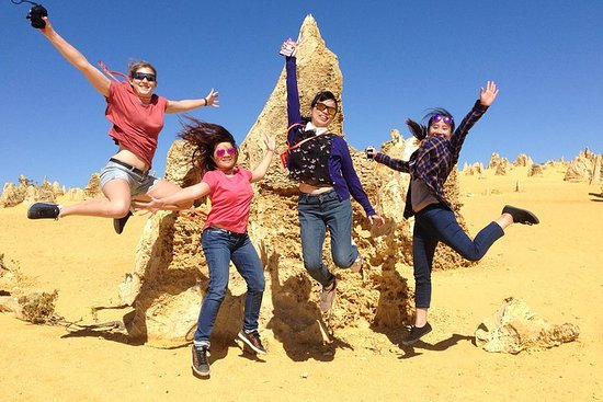 Pinnacles and Swan Valley Day Trip from...