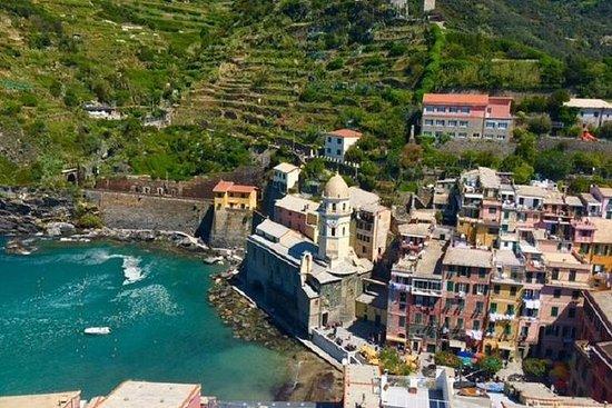 Lo mejor de Cinque Terre Tour en grupo pequeño desde Viareggio