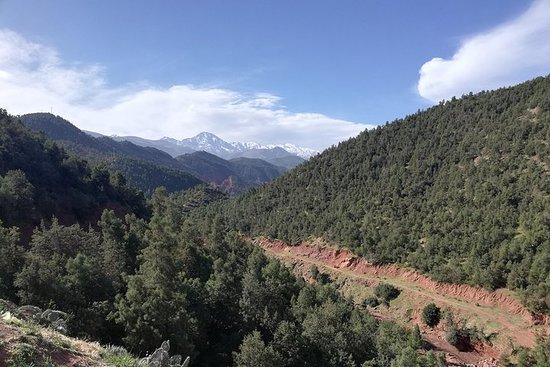 Dagstur til Ourika Valley og High Atlas...