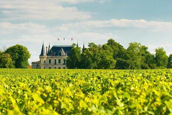 Excursion d'une journée en Bourgogne au départ de Paris avec...
