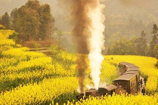 Il treno a vapore privato di 2 giorni di Jiayang e il tour del Buddha
