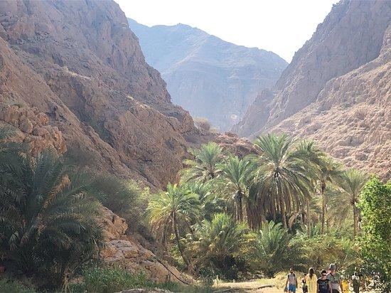 In Wadi Shab loop je tussen de dadelpalmen en rotsachtig gebergte. Dat kan slechter
