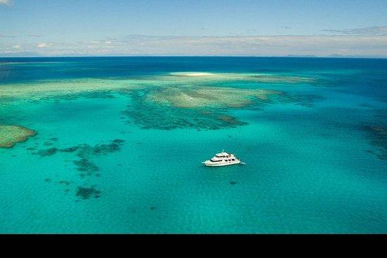 Duik- en snorkelcruise naar het Great Barrier Reef vanuit Mission ...