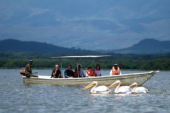 12-dagers Kenya og Tanzania Safari Private Lodge Safari fra Nairobi
