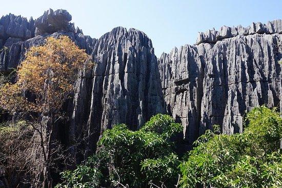 Grand Tsingy De Bemaraha und Baobab...