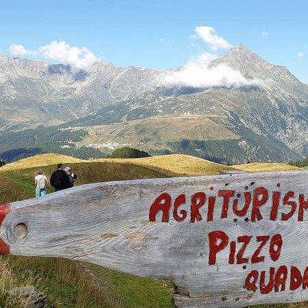 Samolaco, Italia: Agriturismopizzoquadro@gmail.com