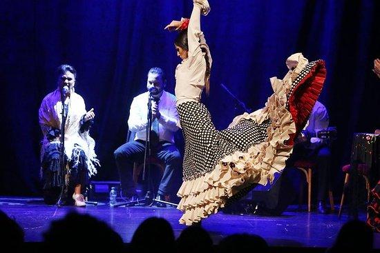 Show de flamenco no TEATRO Barcelona...