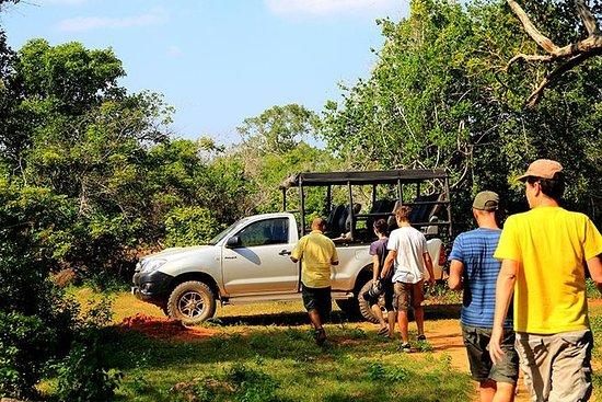 Visite privée: Safari au parc...