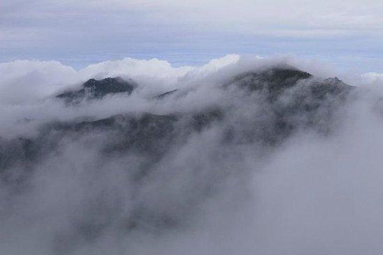 2-dages Mt Miyanoura og Jomon Sugi Vandretur på Yakushima Island