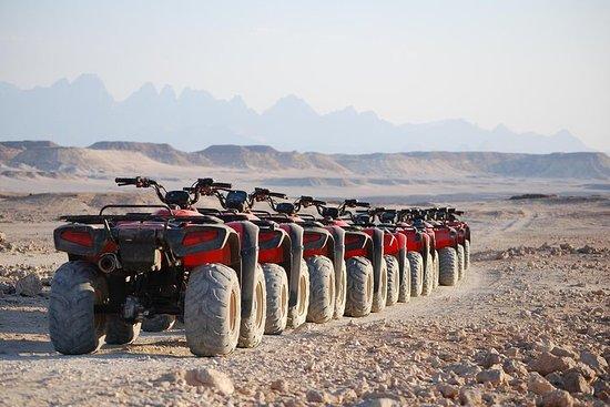 El Gouna Sunset Safari Tour mit Quad...