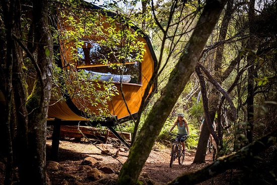 Blue Derby Pods Ride Experience 3-Day Mountain Bike Adventure in Exclusive Pods Photo