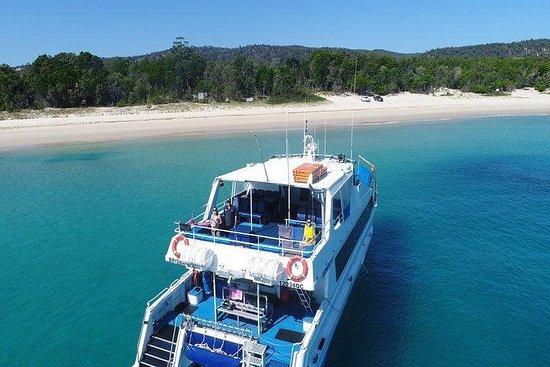 Cruise in Moreton Bay Marine Park and Moreton Island