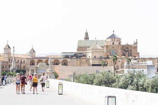 Recorrido de 8 días al sur de España...