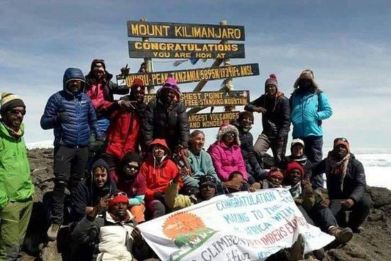 Kilimanjaro trek 8 days Lemosho route