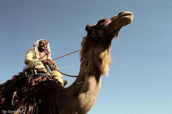 Deux jours de safari en chameau au...