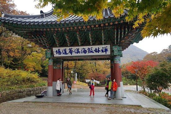 Visite privée de 4 jours en Corée