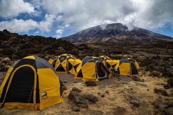 Kilimanjaro climb by Lemosho Route...
