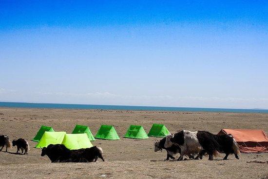 Qinghai Lake Summer pasture hike