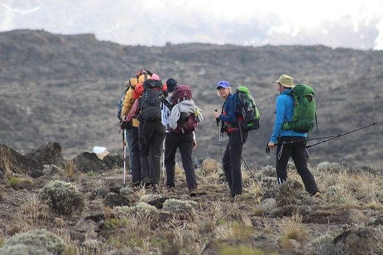 Kilimanjaro Lemosho Route 8 Days Φωτογραφία