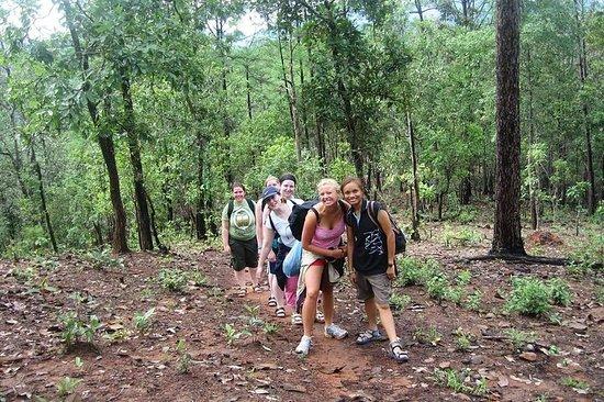 2D1N Parc national de Mae Wang...